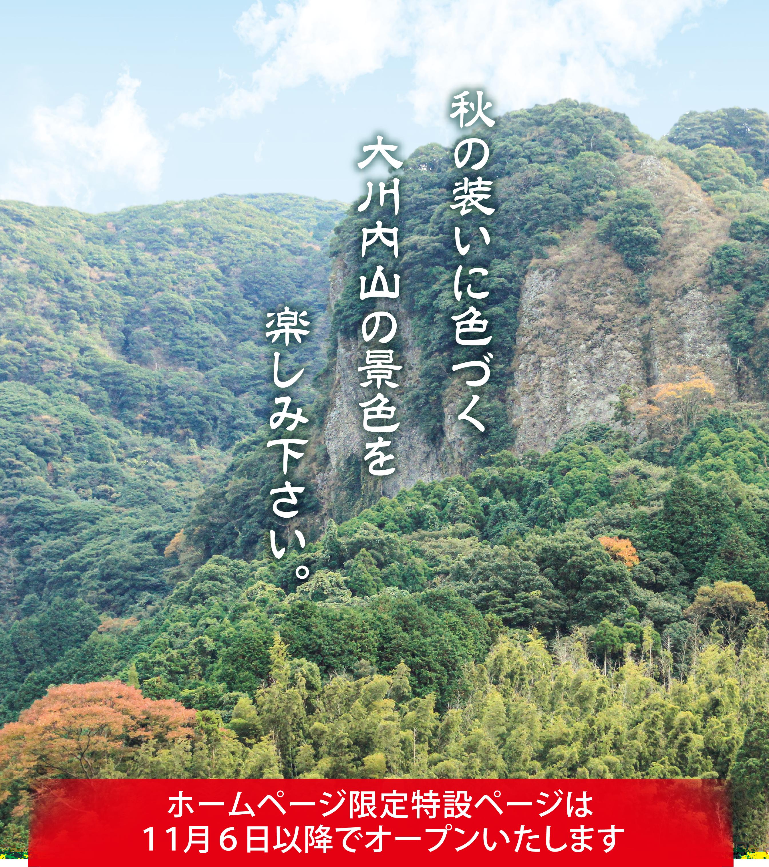 鍋島藩窯秋まつり風景